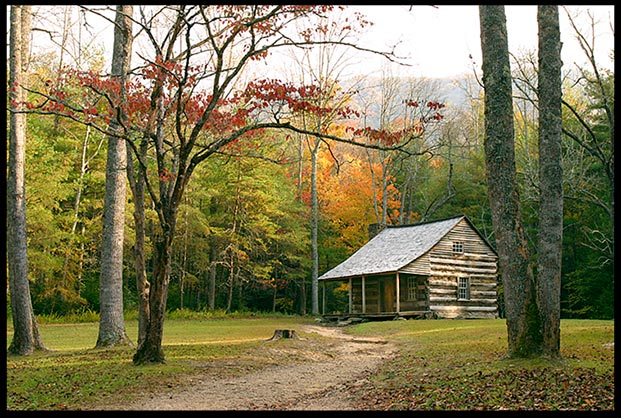 Contact us photo of a log cabin with fall trees in Cades Cove in The Great Smoky Mountains National Park